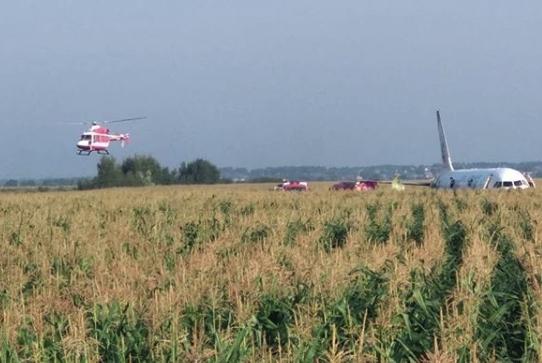俄客机起飞时与海鸥相撞迫降玉米地 致23人受伤